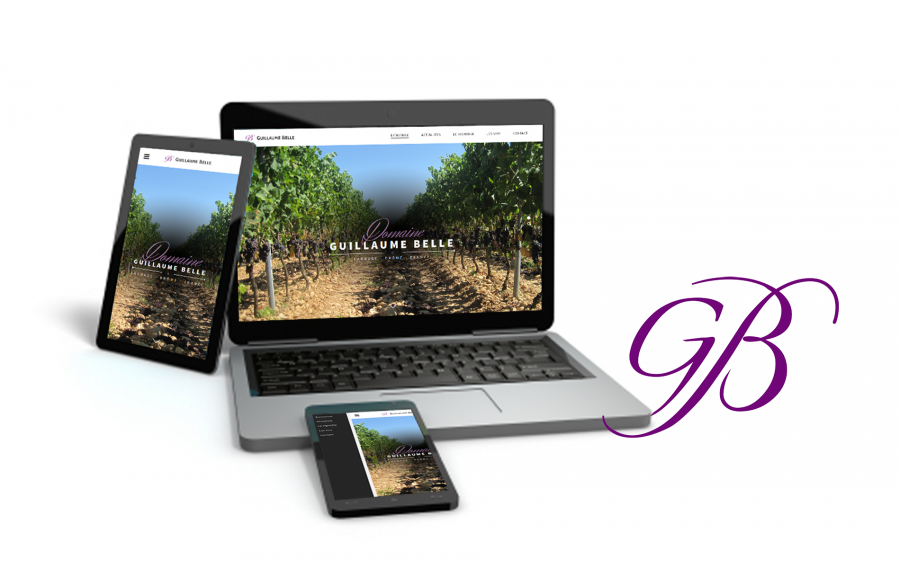 A new website for Domaine Guillaume Belle